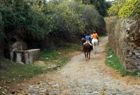 Granja-Escuela Farm School (Active Tourism)