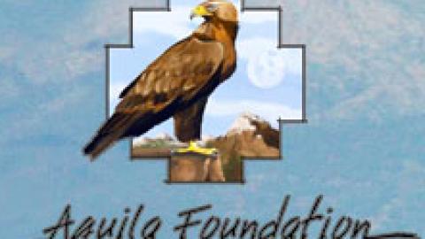 Fundación Aquila