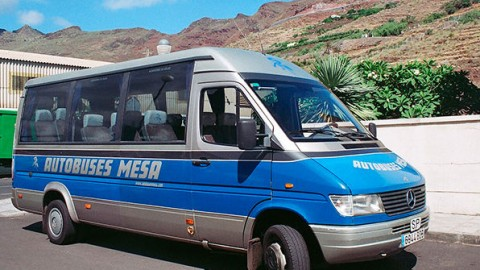 Mesa buses